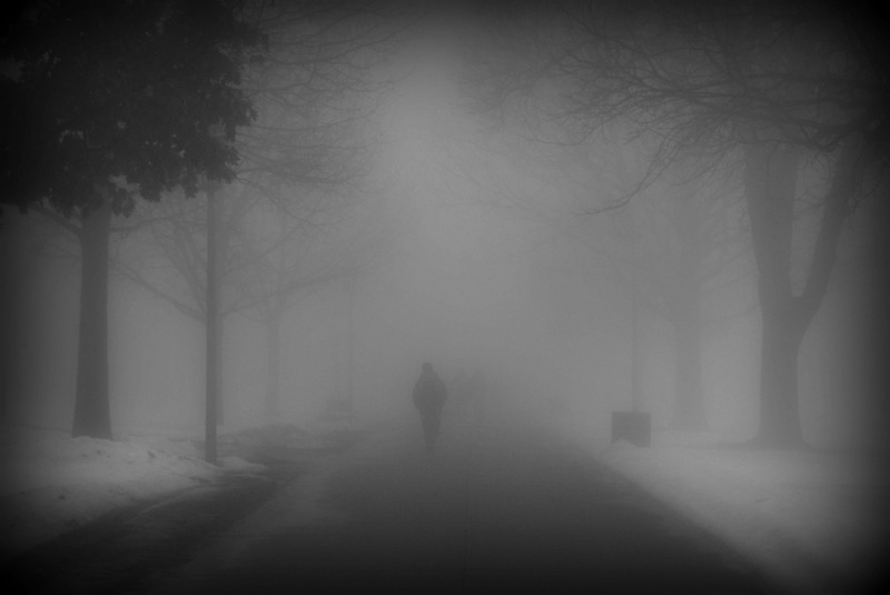 dustbunnyinthewind.com-fog