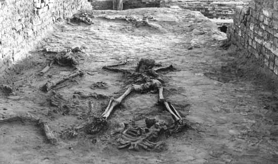 mohenjo skeletons