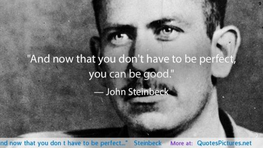 and-now-that-you-dont-have-to-be-perfect-steinbeck