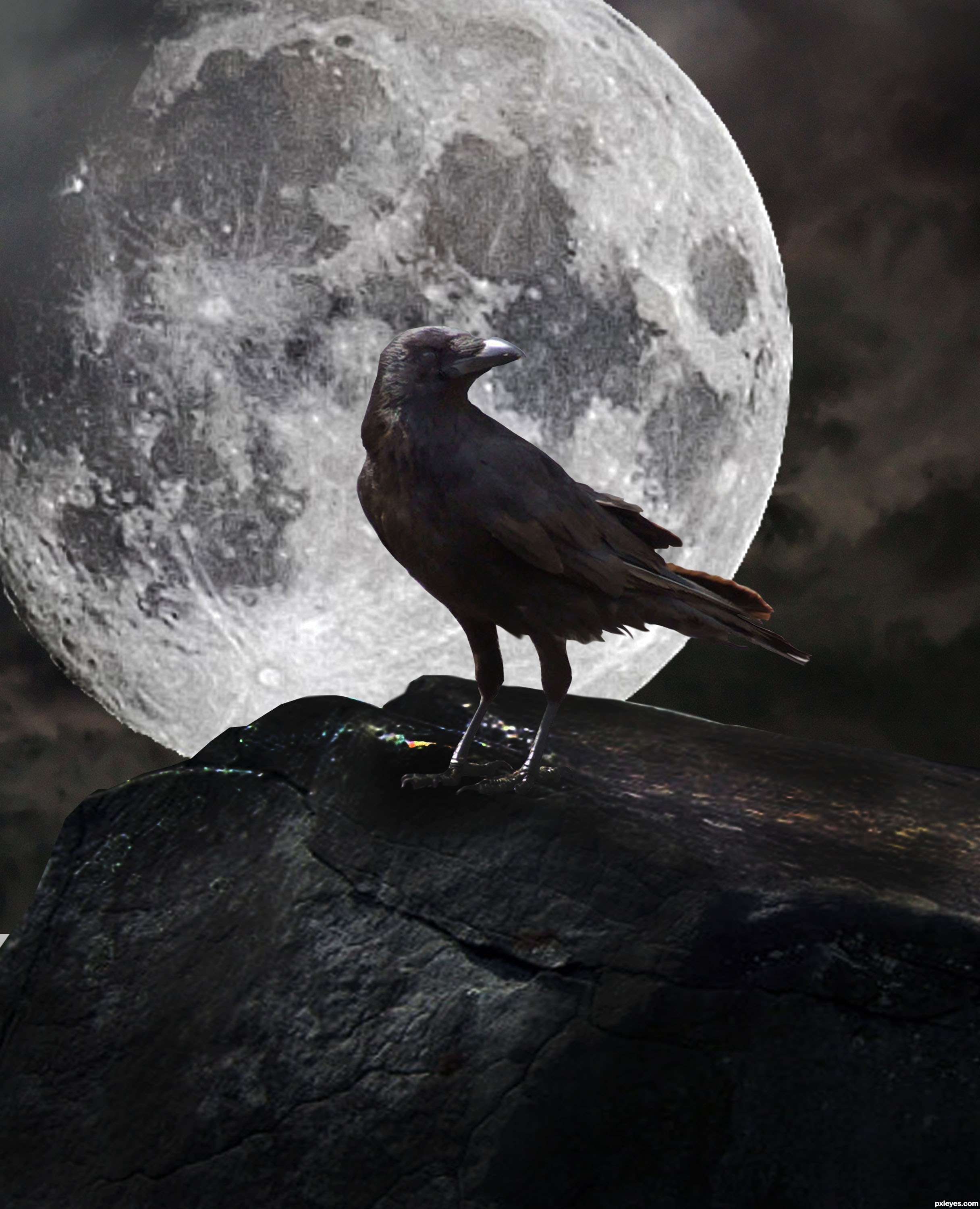 raven against the moon
